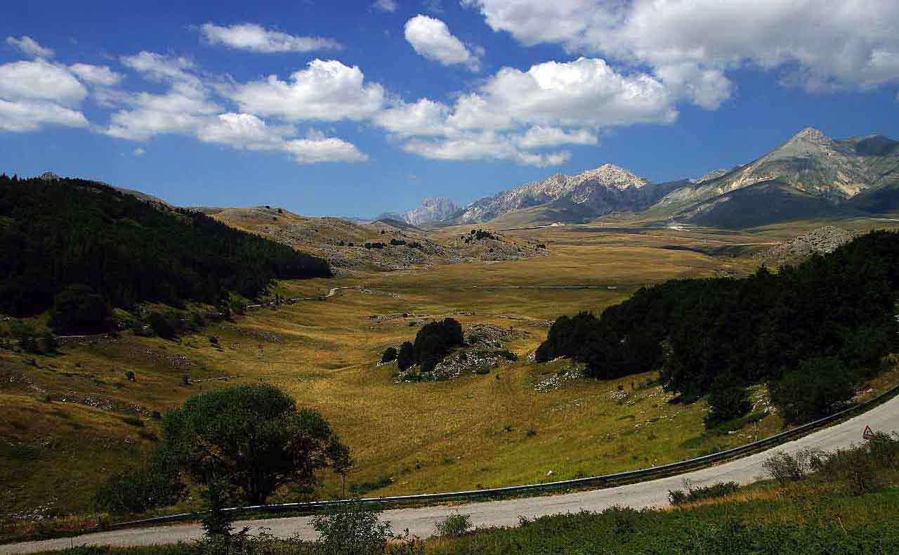 Grifoni-piana-di-Campo-Imperatore-foto-Adriano-Di-Benedetto-2